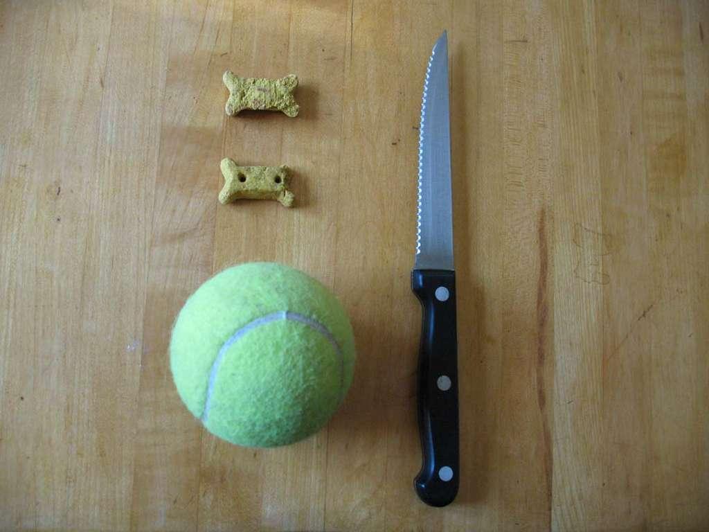 Как сделать игрушки своими руками для собак